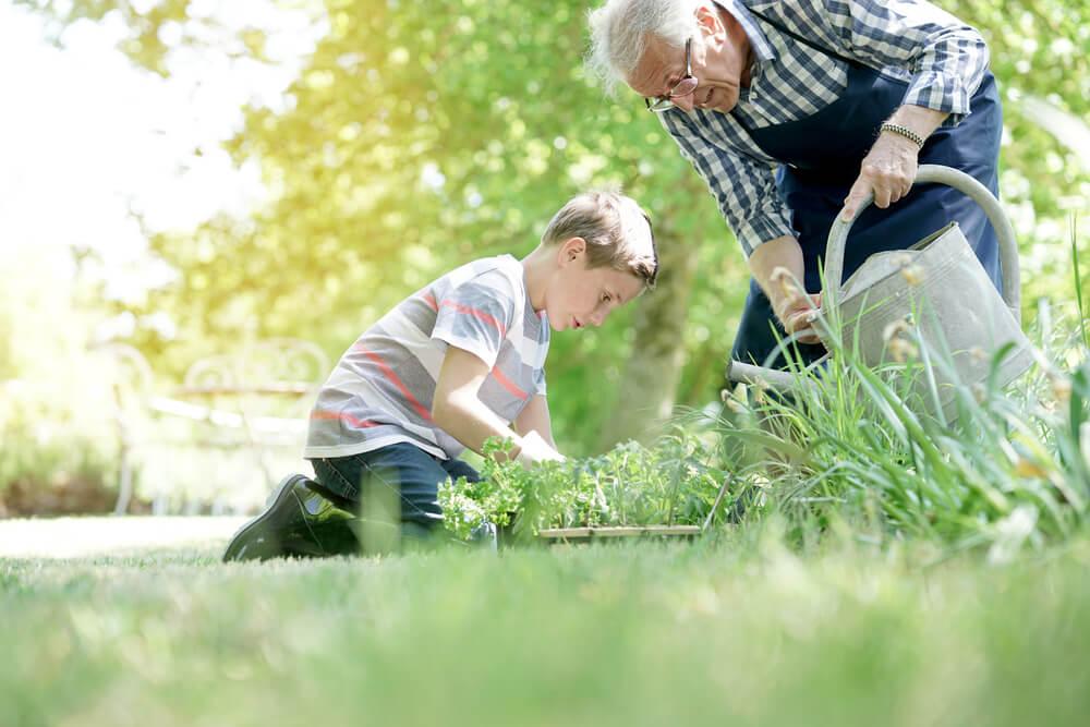 poboljsanje imuniteta kod starijih